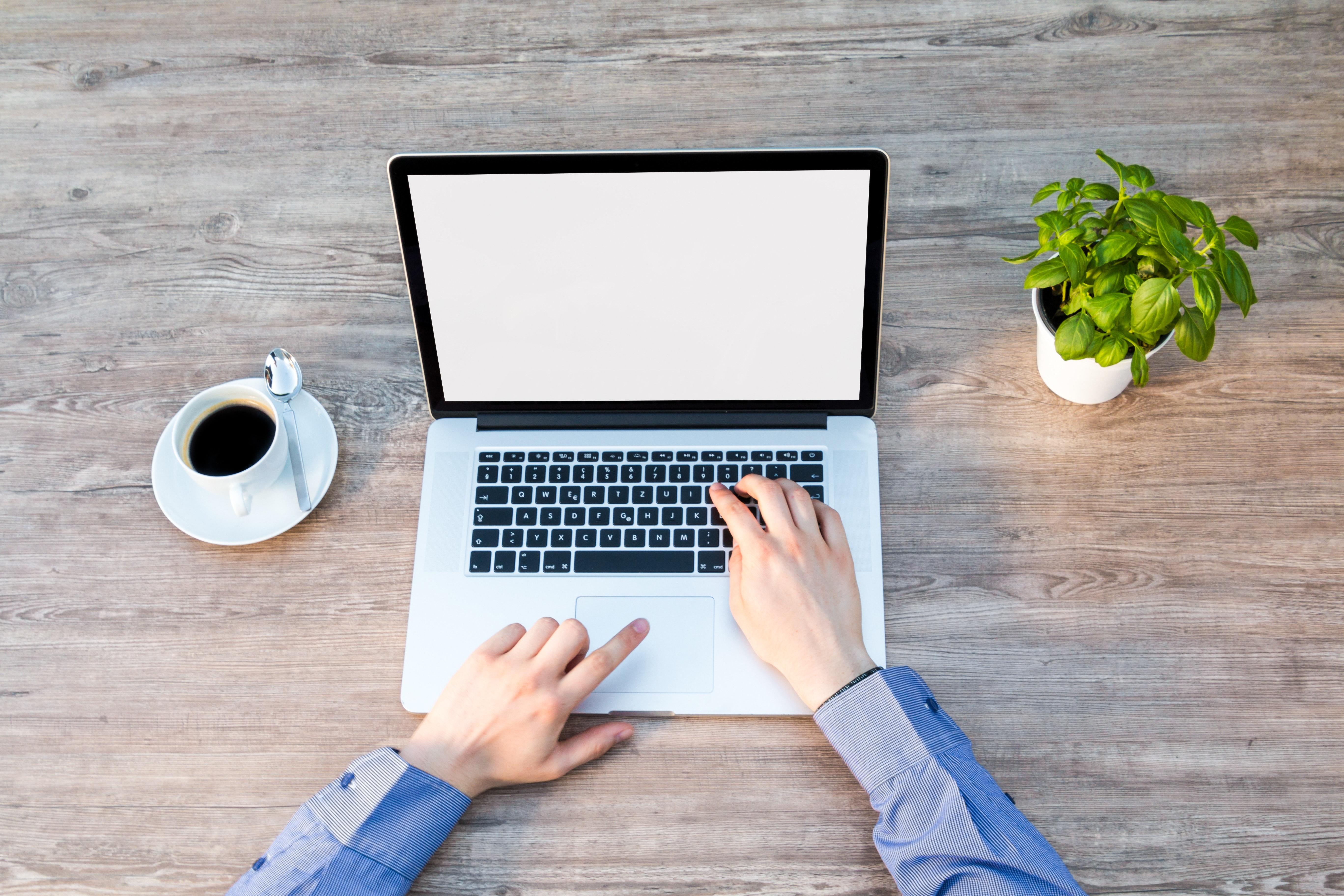 Tech Startup Work Culture
